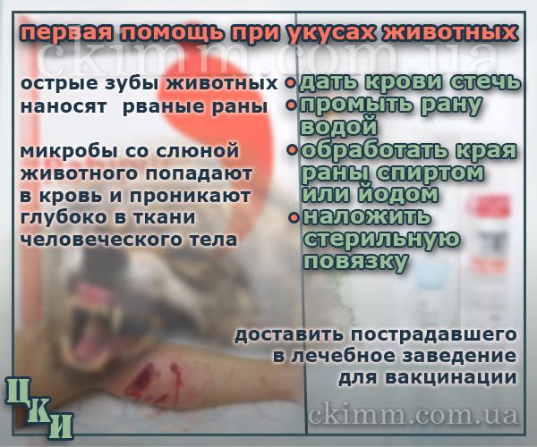 Неотложная помощь при укусе животного. Профилактика вакциной рабипур