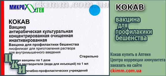 Вакцина КОКАВ купить в Центре ЦКИ. ИНСТРУКЦИЯ