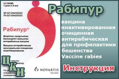 рабипур - вакцина от бешенства купить, цена, инструкция