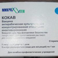 Прививка от бешенства 1 доза