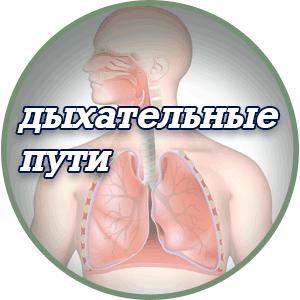 препараты для Лечения-дыхательных-путей.
