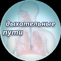 Лечение дыхательных путей